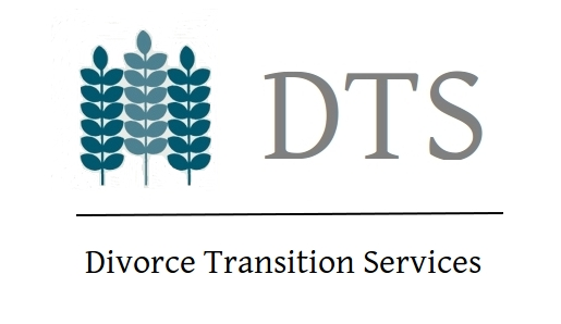 Divorce Transition Services